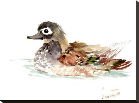 Duck-Suren Nersisyan-Stretched Canvas Print
