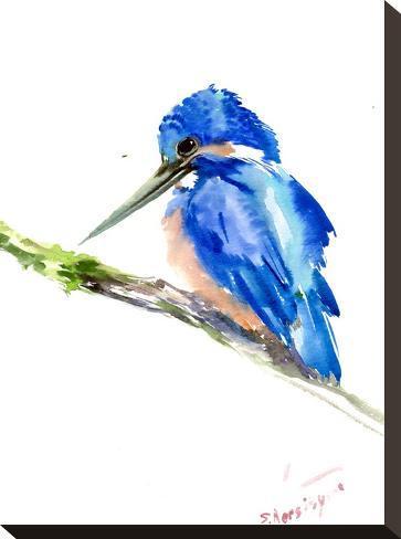 Kingfisher-Suren Nersisyan-Stretched Canvas Print