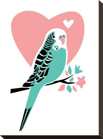 Parakeet-3-Jilly Jack Designs-Stretched Canvas Print
