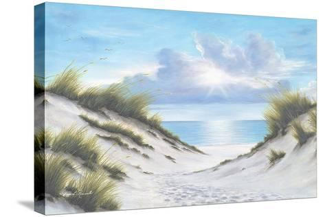 Sand and Sea-Diane Romanello-Stretched Canvas Print