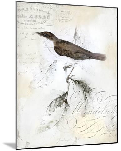 Rustic Gould II-Studio W-Mounted Art Print