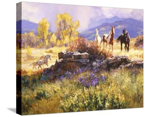 Stormy Afternoon-Claire Goldrick-Stretched Canvas Print