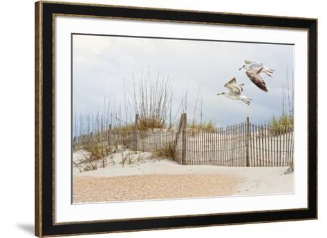 Water Bird Glimpse I-PHBurchett-Framed Art Print
