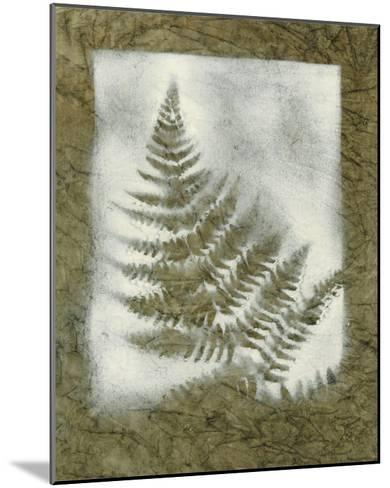 Shadows & Ferns II-Renee W^ Stramel-Mounted Giclee Print