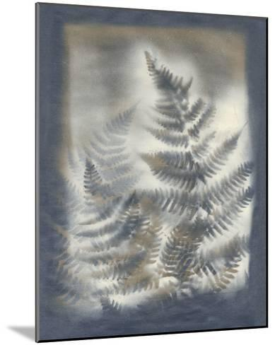 Shadows & Ferns V-Renee W^ Stramel-Mounted Giclee Print