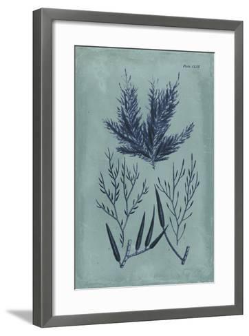 Indigo & Azure Seaweed I-Vision Studio-Framed Art Print
