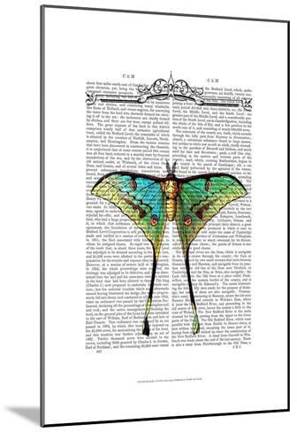 Butterfly 1-Fab Funky-Mounted Art Print