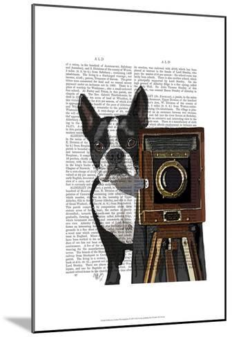 Boston Terrier Photographer-Fab Funky-Mounted Art Print