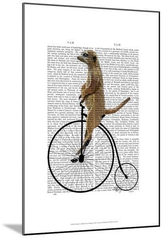Meerkat on Black Penny Farthing-Fab Funky-Mounted Art Print