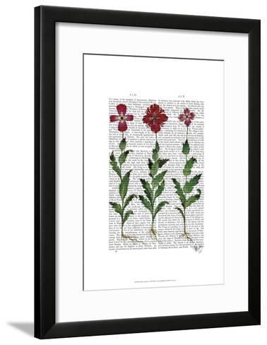 Italian Carnation 1-Fab Funky-Framed Art Print