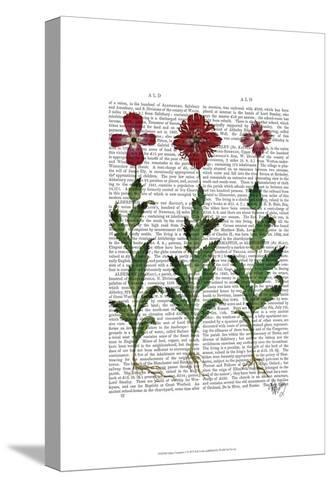 Italian Carnation 1-Fab Funky-Stretched Canvas Print