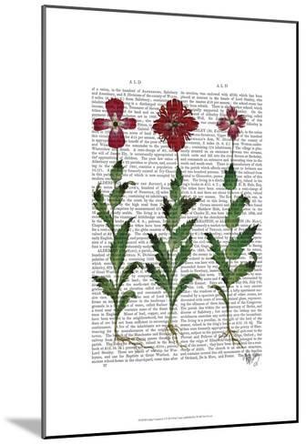 Italian Carnation 1-Fab Funky-Mounted Art Print