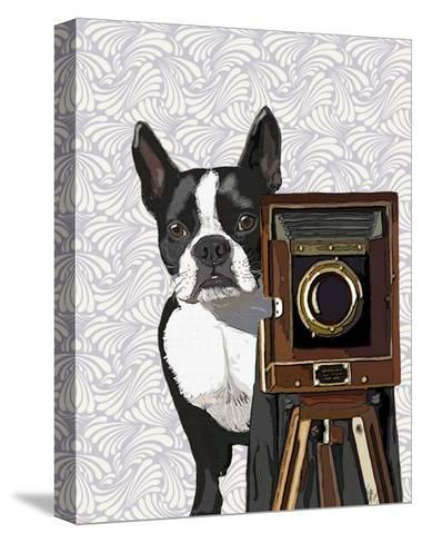 Boston Terrier Photographer-Fab Funky-Stretched Canvas Print