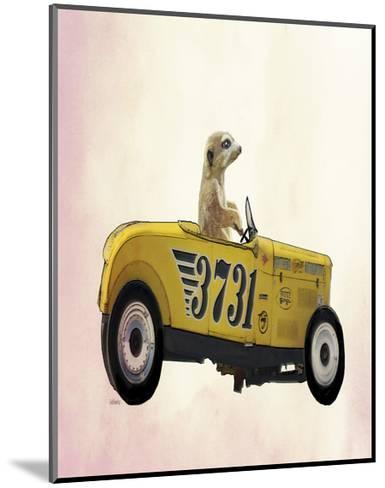 Meerkat in Hot Rod-Fab Funky-Mounted Art Print