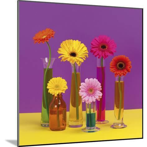 Floral Pop I-Camille Soulayrol-Mounted Giclee Print