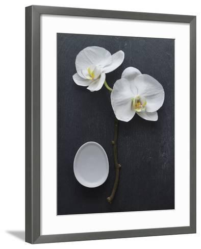 Harmony I-Camille Soulayrol-Framed Art Print