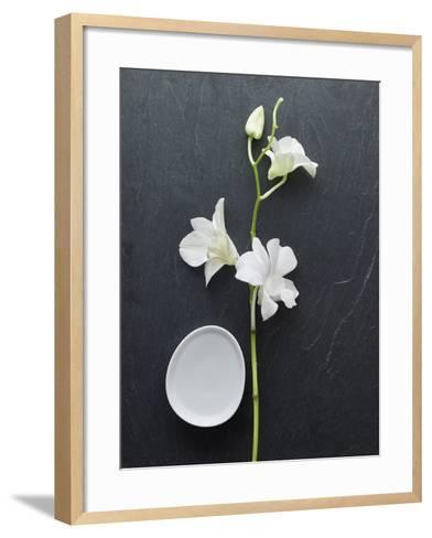 Harmony II-Camille Soulayrol-Framed Art Print