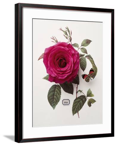 Floral Decoupage - Rosa-Camille Soulayrol-Framed Art Print