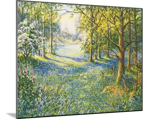 Bluebell Valley-John Halford Ross-Mounted Giclee Print