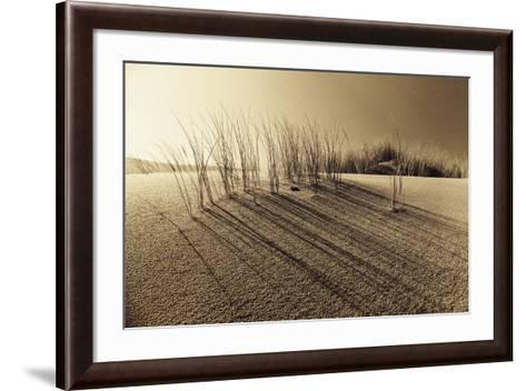 Sands of Time-Jo Crowther-Framed Art Print