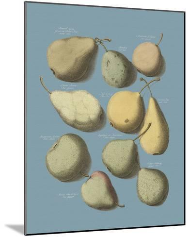 Orchard Fruits II-A^ Poiteau-Mounted Giclee Print