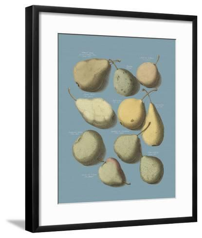 Orchard Fruits II-A^ Poiteau-Framed Art Print