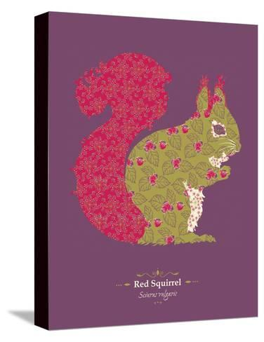 Red Squirrel - WWF Contemporary Animals and Wildlife Print- WWF-Stretched Canvas Print