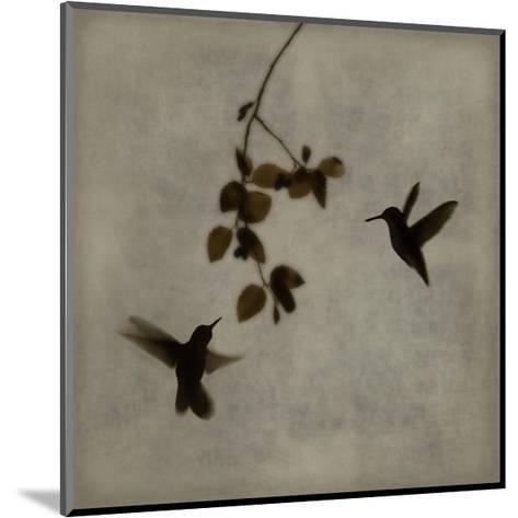 Dance in Flight II-Chris Donovan-Mounted Giclee Print