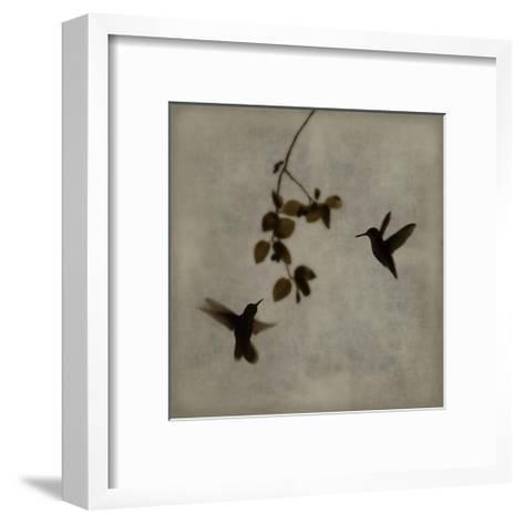 Dance in Flight II-Chris Donovan-Framed Art Print