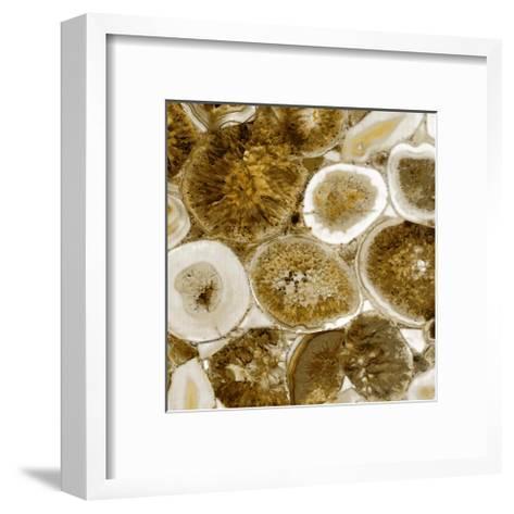 Agate in Gold II-Danielle Carson-Framed Art Print
