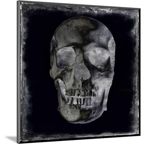 Skull II-Martin Wagner-Mounted Giclee Print