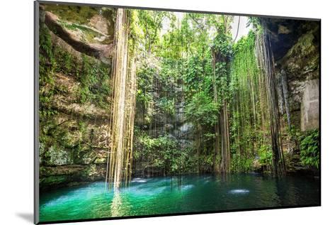 Falls Near Chichen Itza Mexico--Mounted Premium Giclee Print
