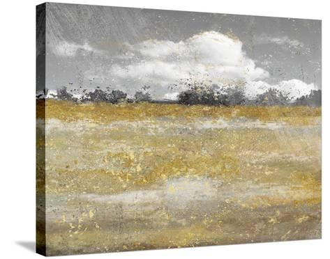 Meadow Shimmer II--Stretched Canvas Print
