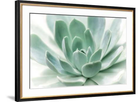 Zen-Dina Marie-Framed Art Print