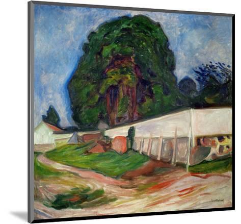 Summer Night, Aasgaard Beach, 1904-Edvard Munch-Mounted Giclee Print