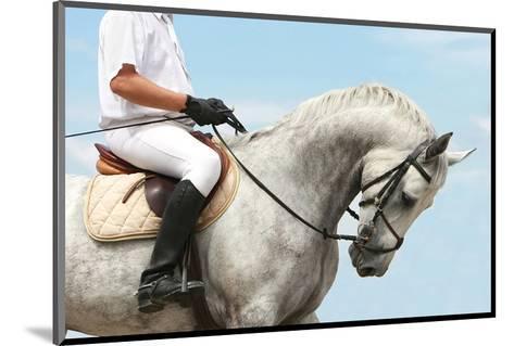 Jockey Riding Dressage Horse--Mounted Art Print