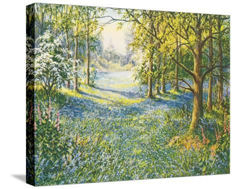 Bluebell Valley-John Halford Ross-Stretched Canvas Print