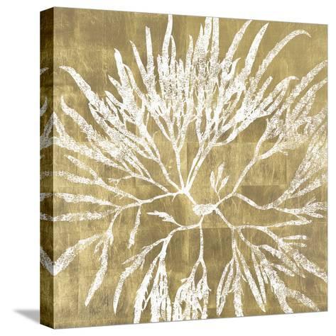 Radiant Reef I-Maria Mendez-Stretched Canvas Print