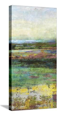 Green Fields II-Paul Duncan-Stretched Canvas Print