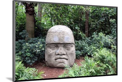 Olmec Head in a Forest--Mounted Art Print