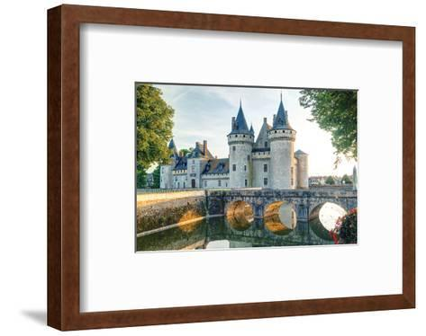 Sully-Sur-Loire Chateau France--Framed Art Print