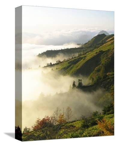 Foggy Japanese Valley in Fall--Stretched Canvas Print