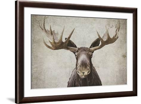 Elmer Art Print by Natasia Cook | Art.com