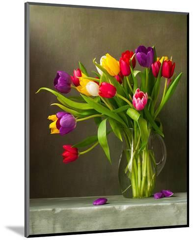 Colorful Tulips Still Life--Mounted Art Print