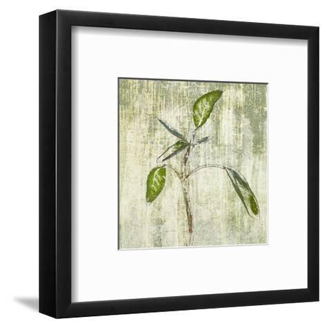 Leafy Green 4--Framed Art Print