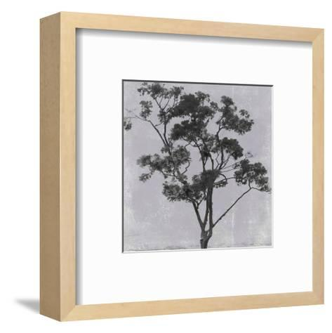 Adajio 45--Framed Art Print