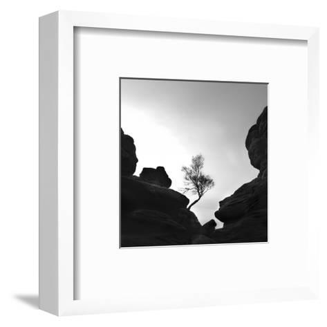 Alone on the Rocks--Framed Art Print
