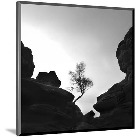 Alone on the Rocks--Mounted Art Print