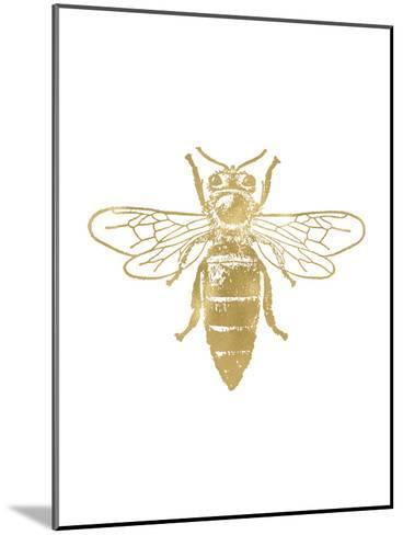 Bumblebee Golden White-Amy Brinkman-Mounted Art Print
