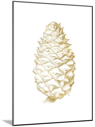 Pine Cone Golden White-Amy Brinkman-Mounted Art Print